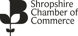 Search Engine Optimisation (SEO) - Shropshire Chamber